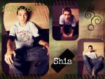 wallpapers de Shia LaBEOUF