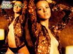 wallpapers de Amy ACKER