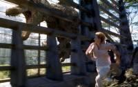 Jurassic Park 3 : image 464522