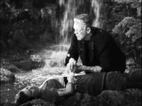 La Fianc�e de Frankenstein : image 479071