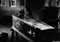 Le Spectre du chat : image 445635