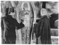 La Tombe de la momie : image 519385