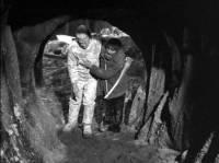Le Spectre de Frankenstein : image 547104
