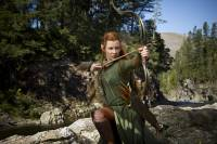 Le Hobbit : la Désolation de Smaug : image 490116