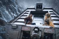 Solo: A Star Wars Story : image 614429