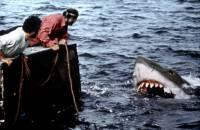 Les Dents de la mer : image 442328