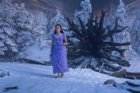 The Nutcracker and the Four Realms : image 632122