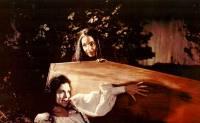 Les Ma�tresses de Dracula : image 437083