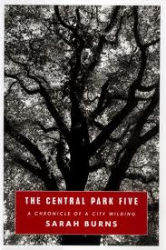 jaquette pour The Central Park Five