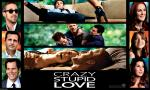 wallpapers Crazy, Stupid, Love