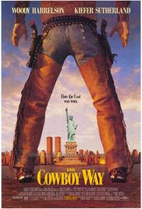 affiche  Deux cowboys � New York 366713