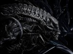 wallpapers Aliens : le retour
