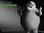 wallpaper  Frankenweenie 391756