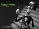 wallpaper  Frankenweenie 391757