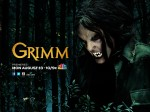 wallpapers Grimm