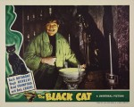 wallpaper  Le Chat noir 421980