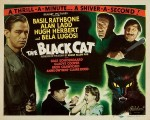 wallpaper  Le Chat noir 421987