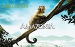 wallpapers Amazonia