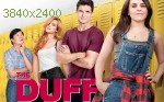 wallpapers The DUFF