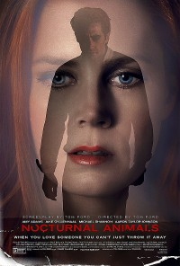 Poster Nocturnal Animals 527456