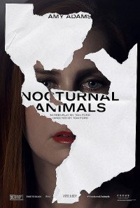 Poster Animaux nocturnes 527457