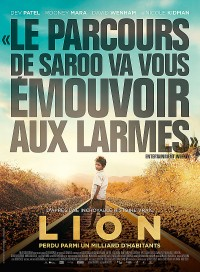 Poster Lion 528511