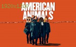 wallpapers American Animals
