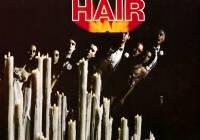 Hair : image 364009
