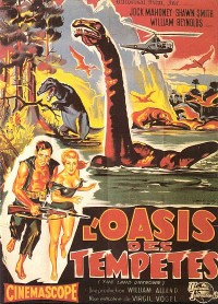 affiche  L'Oasis des temp�tes 108597