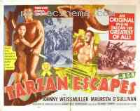wallpapers Tarzan s'évade
