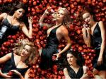 wallpapers Desperate Housewives