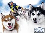 wallpapers Chiens des neiges