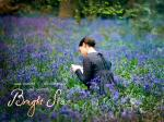 wallpapers Bright Star