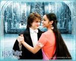 wallpaper  Harry Potter et la coupe de feu 277292