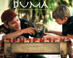 wallpapers Douma et ses amis