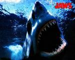 wallpaper  Les Dents de la mer 298737