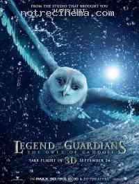Poster Le Royaume de Ga'Hoole - La L�gende des gardiens 312856