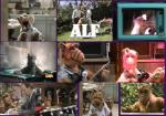 wallpapers Alf