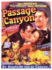 affiche  Le Passage du canyon 42659