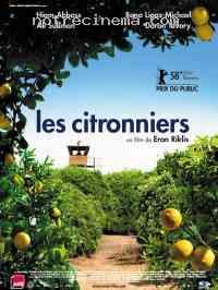 affiche  Les Citronniers 93182