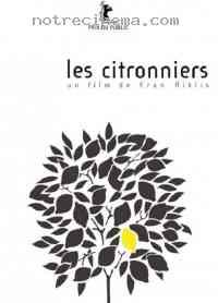 affiche  Les Citronniers 93186