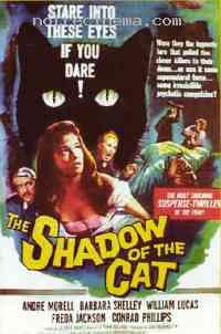 Poster Le Spectre du chat 94747