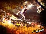 wallpapers Shaolin basket